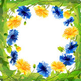 Wiosny pola kwiaty dla eighth urodziny lub Marzec Obrazy Royalty Free
