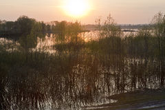 Wiosny powódź Fotografia Royalty Free