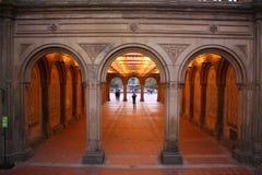 Central Park Obraz Stock
