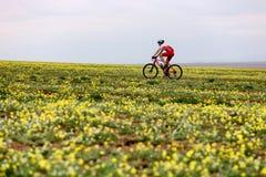 Wiosny przygody roweru górskiego rywalizacja Fotografia Royalty Free