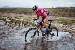 Wiosny przygody roweru górskiego rywalizacja Zdjęcie Royalty Free