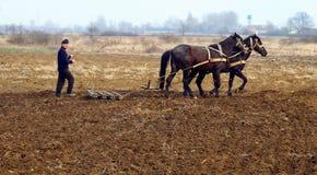 Wiosny śródpolna praca w obszarach wiejskich Transcarpathia Fotografia Royalty Free