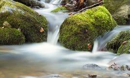 Wiosny rzeka Obrazy Stock