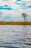 Wiosny rzeka Obrazy Royalty Free
