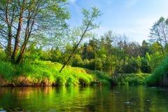 Wiosny rzeka Zielony natura krajobraz na riverbank Sceniczny brzeg rzeki z zielonymi drzewami obrazy royalty free