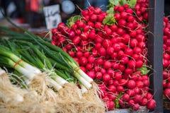 Wiosny rzodkiew przy karmowym rynkiem i cebula zdjęcia stock