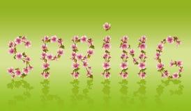 Wiosny słowo, Sakura drzewa Japoński czereśniowy okwitnięcie ilustracji