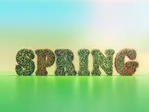 Wiosny słowo zakrywający z wiosna kwiatami ilustracja wektor