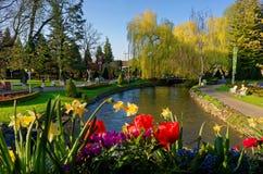 Wiosny sceneria w parku przy rzeką Fotografia Royalty Free