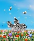 Wiosny sceny plakat, krajobraz Zdjęcie Stock