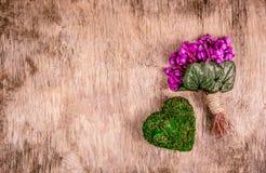 Wiosny serce od mech i kwiaty Romantyczny bukiet z sercem Delikatni fiołki i serce Obraz Stock