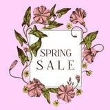 Wiosny sprzedaży odznaka nad ręka rysującym jabłkiem kwitnie na różowym tle ilustracji