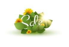 wiosny sprzedaży tło eps10 kwiatów pomarańcze wzoru stebnowania rac ric zaszywanie paskował podstrzyżenia wektoru tapety kolor żó Zdjęcia Royalty Free