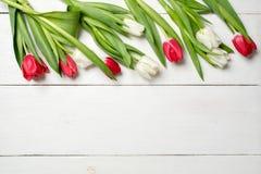 Wiosny tło, tulipany na wierzchołku na białym drewnianym biurku, kartka z pozdrowieniami szablon dla kobiet lub matka dzień, szta obraz royalty free