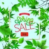 Wiosny tło z zieleni ramą na modnym geometrycznym tle i liśćmi również zwrócić corel ilustracji wektora Świeży szablonu projekt ilustracji