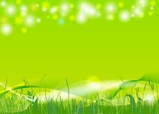 Wiosny tło ilustracja wektor