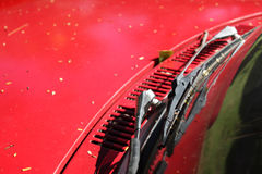 The wipers on red car Stock Image