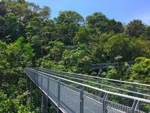 Wipfelweg südliche Kantenspur in Singapur Lizenzfreie Stockbilder