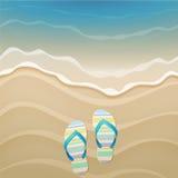 Wipschakelaars en shells op het strand Stock Afbeelding