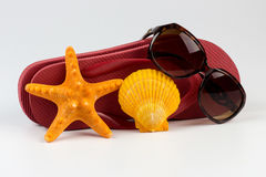 Wipschakelaars en zonnebril met shells royalty-vrije stock afbeelding