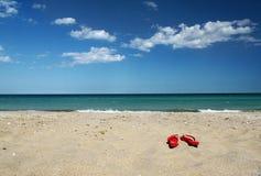 Wipschakelaars op zand Royalty-vrije Stock Foto's