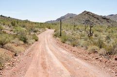 Żwir droga, Organowej drymby Kaktusowy park narodowy, Arizona Zdjęcie Stock