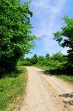 Żwir droga przez lasu Zdjęcie Royalty Free
