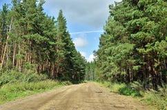 Żwir droga w drewnach Obraz Royalty Free