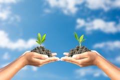 Wir lieben die Welt von Ideen, Mann pflanzten einen Baum im Hand-worl Lizenzfreie Stockfotos