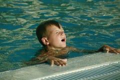 Wir studieren, um zu schwimmen Stockfotografie