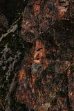 Wiracochan Fotografia Stock
