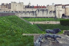 Wire animal sculptures of three Barbary lions by Kendra Haste installed at the Tower of London, England. London, UK - April 2018: Wire animal sculptures of three stock image