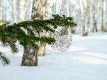 Wire apple on the twig of fir-tree. Royalty Free Stock Photo