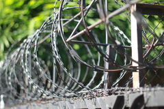 Wire barbed fence hard steel iron metal for security in prison or barrier security around building Stock Images