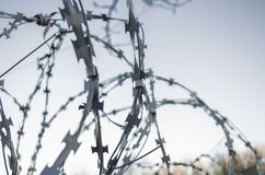 Wire, barbed, sharp, security, fence, system Royalty Free Stock Photo