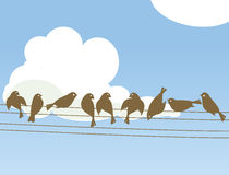 Wire Birds. Birds on Powerlinesand (vector backgrounds Royalty Free Stock Images