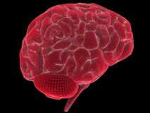Wire brain Royalty Free Stock Image