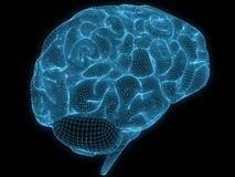 Wire brain Stock Images