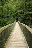 Wire bridge Royalty Free Stock Images
