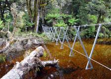 Wire bridge in remote rainforest Stock Images