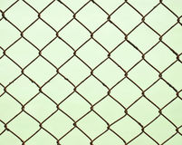 The wire cage Stock Image