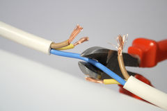 Wire-cutter and cable Stock Image