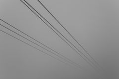 Wire dropes shrouded in mist Stock Image