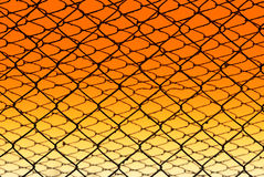 Wire fence. View of texture wire fence with coloured background Stock Photo