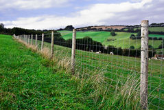 Wire Fence. Royalty Free Stock Photos