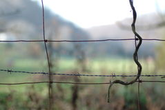Wire fence  Royalty Free Stock Photos