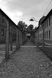 Wire fence at Auschwitz black and white Royalty Free Stock Images