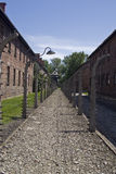 Wire fence in Auschwitz concentration camp Stock Photography