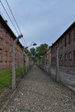 Wire fence at Auschwitz Stock Photo