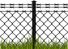 Wire fence with barbed wires Stock Images